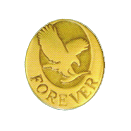 Forever Living pin - Manager